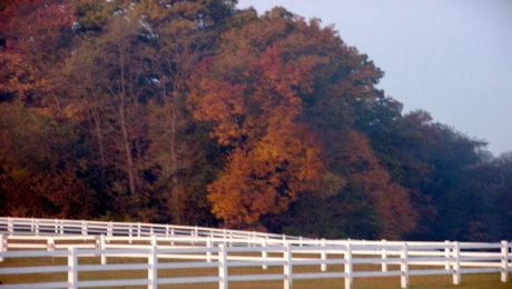 horse fence and pasture fence